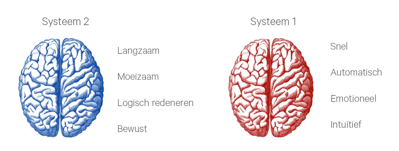Systeem 1 en Systeem 2